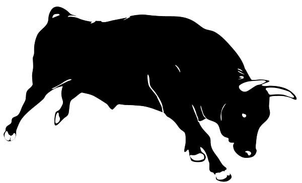 Transparent bull white background. Free png images download