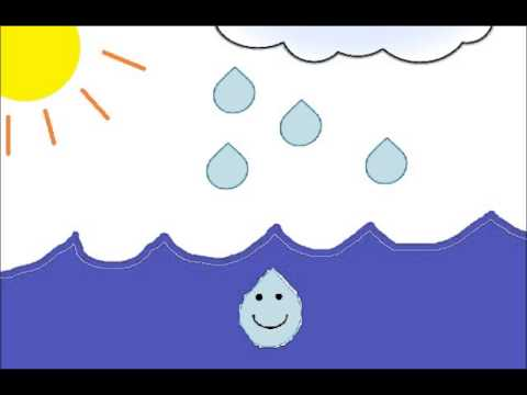 Raindrops clipart water life. The story of a