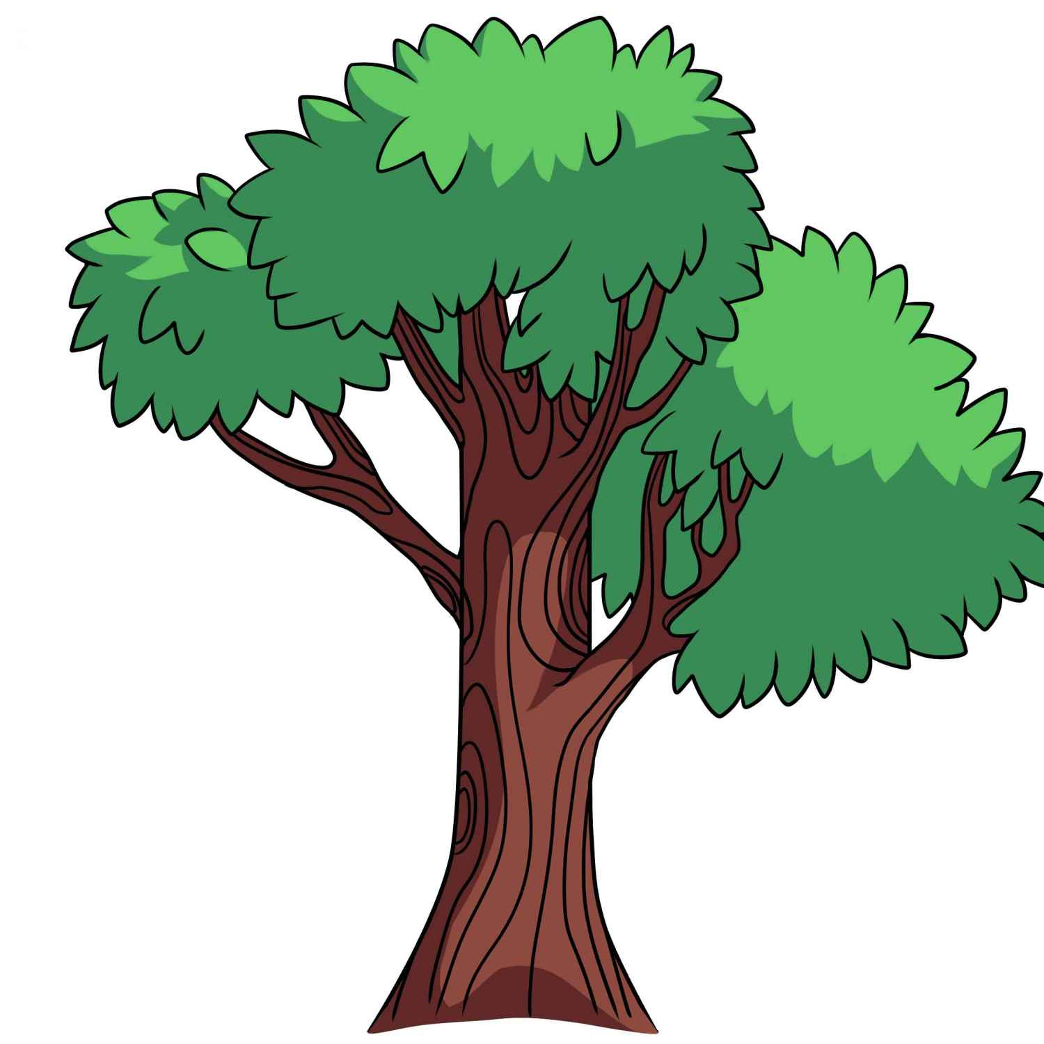 Rainforest clipart forest land. Trees drawing at getdrawings