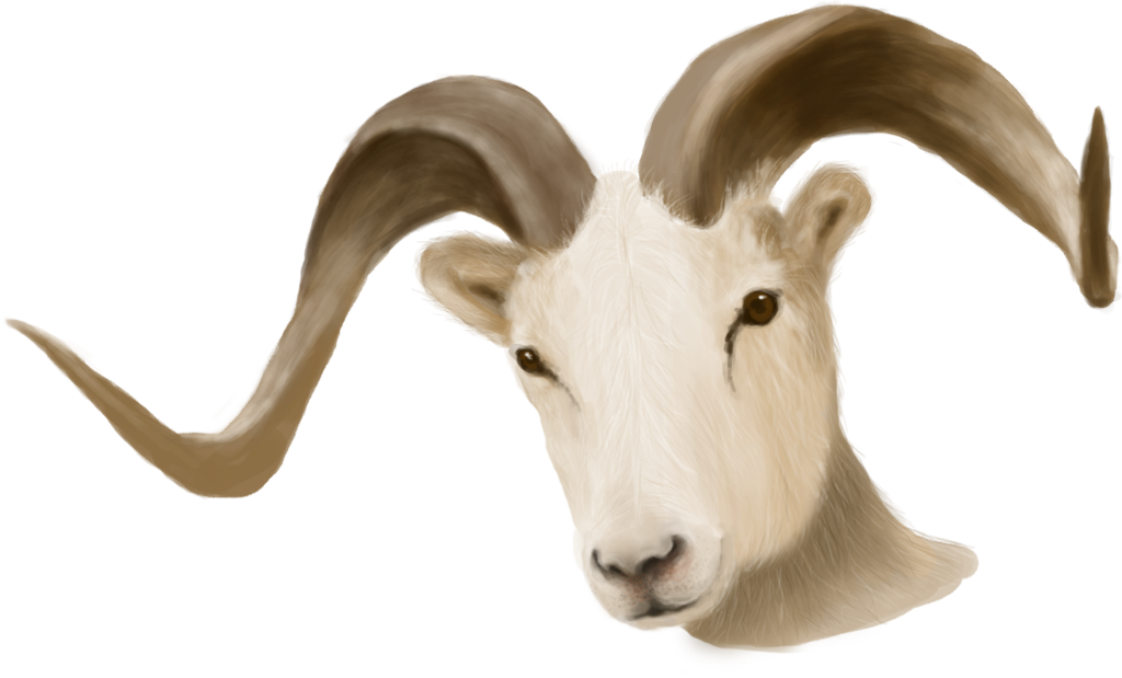 animal horn png