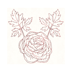 Ranunculus drawing botanical illustration. Redwork machine embroidery designs