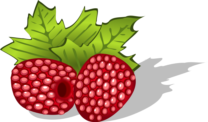 Green raspberry. Free cliparts download clip