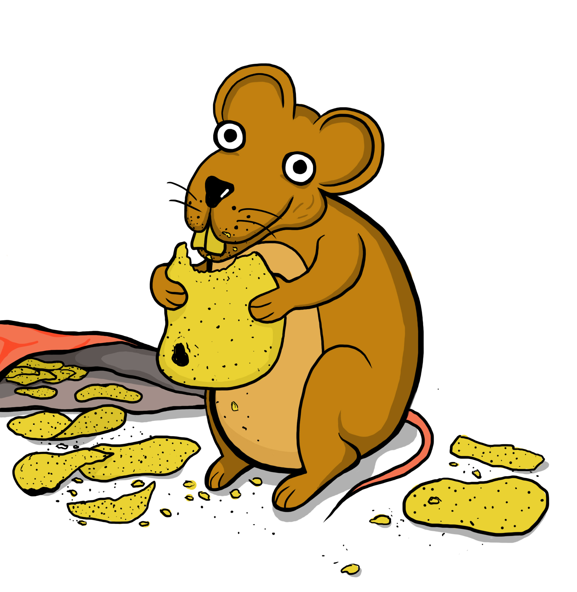 rat clipart animal eating