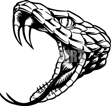 Drawing fangs. Snake head clip art
