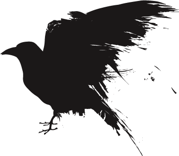 Raven head png. Transparent pictures free icons