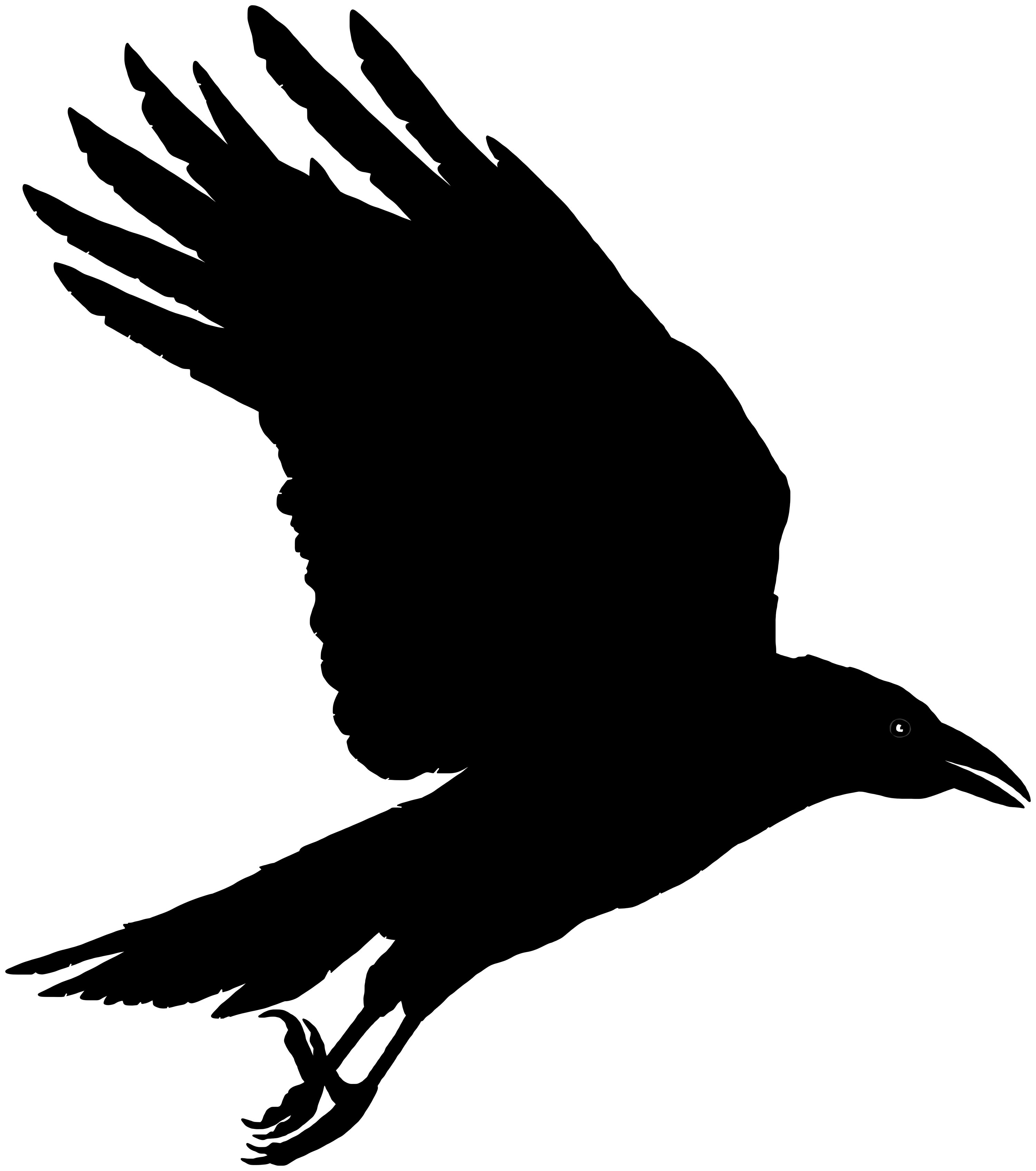 Raven clipart. Fresh collection digital coloring