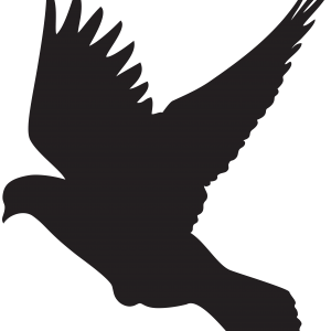 Raven clipart outstretched wing. Collection of clip