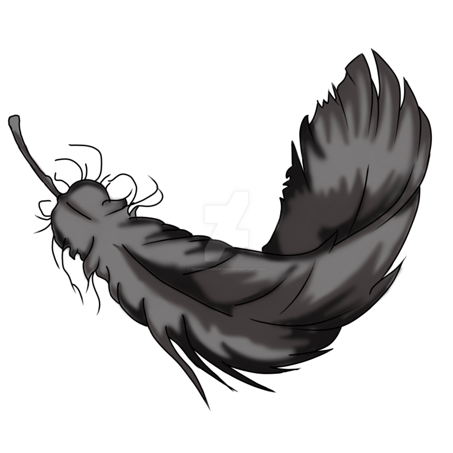 Raven feather png. Exploring item by demonshadow