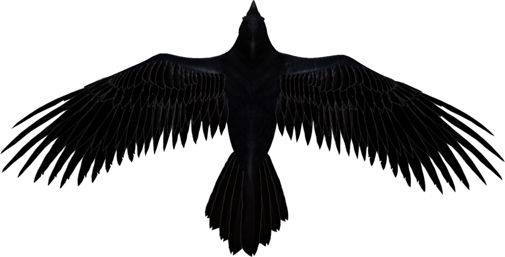 Raven head png. Image render by darkstriiker