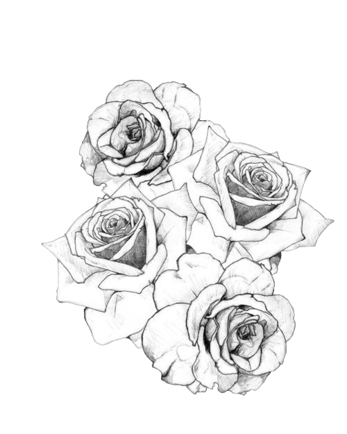 Razor drawing rose tattoo. Tattoos pinterest and piercings