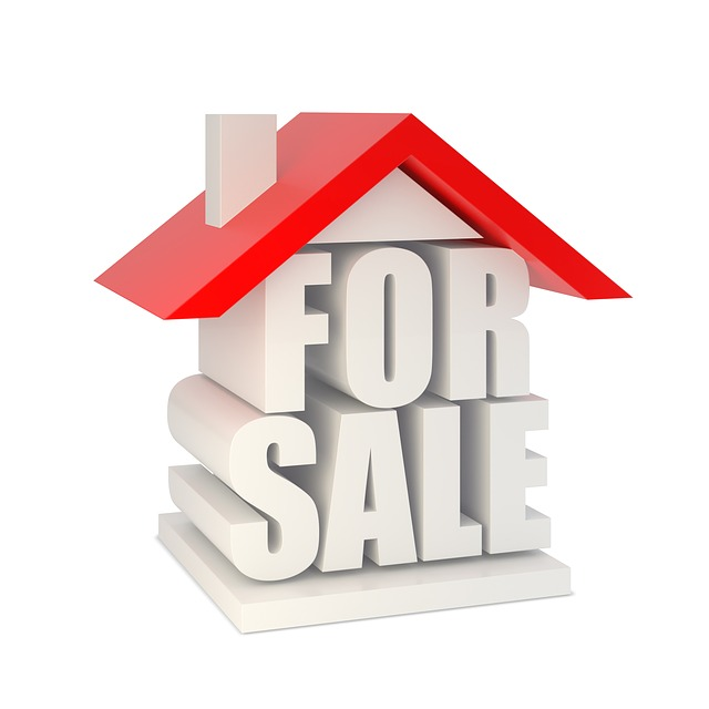 Real estate clipart sale consultant. How can consulting services