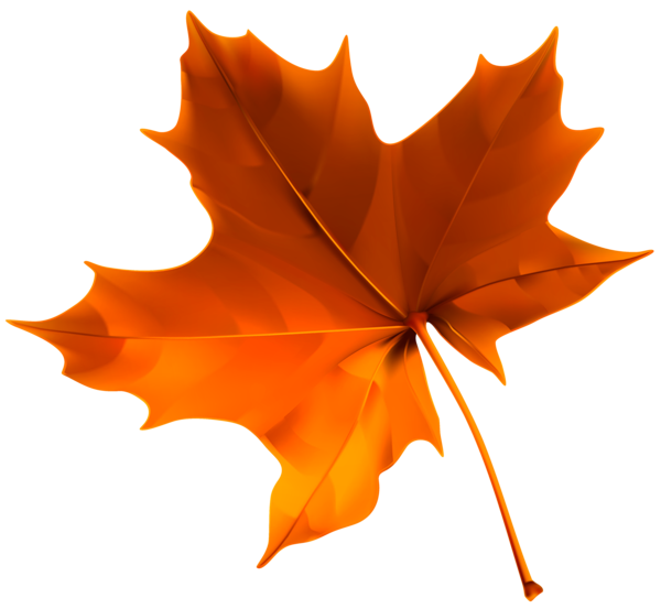 Png falling leaves. Autumn red leaf clipart