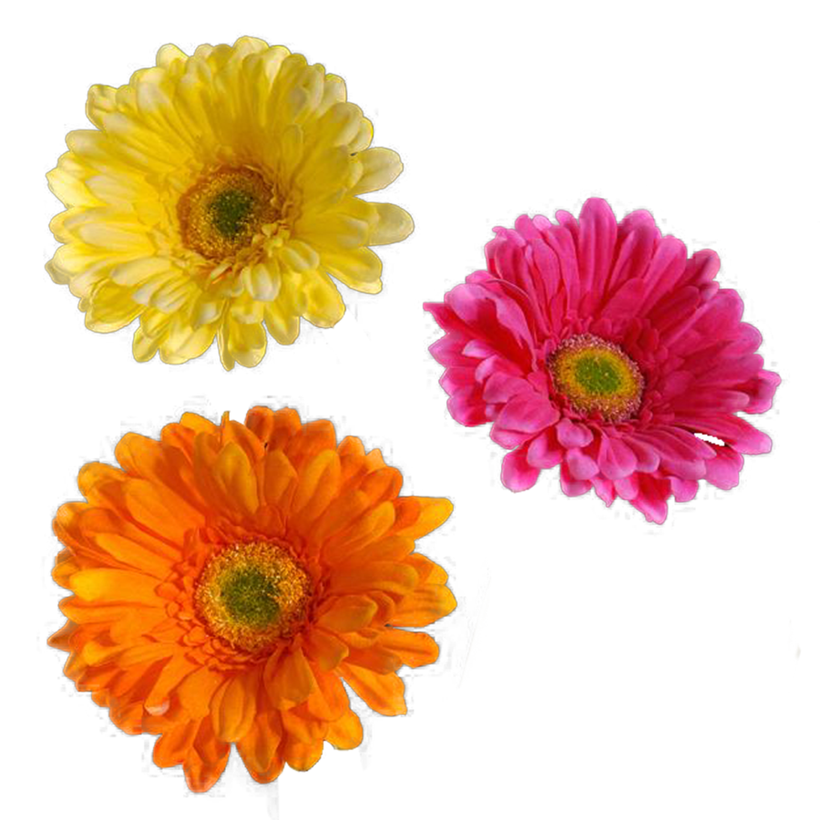 Real flower png. Clear cut by travail