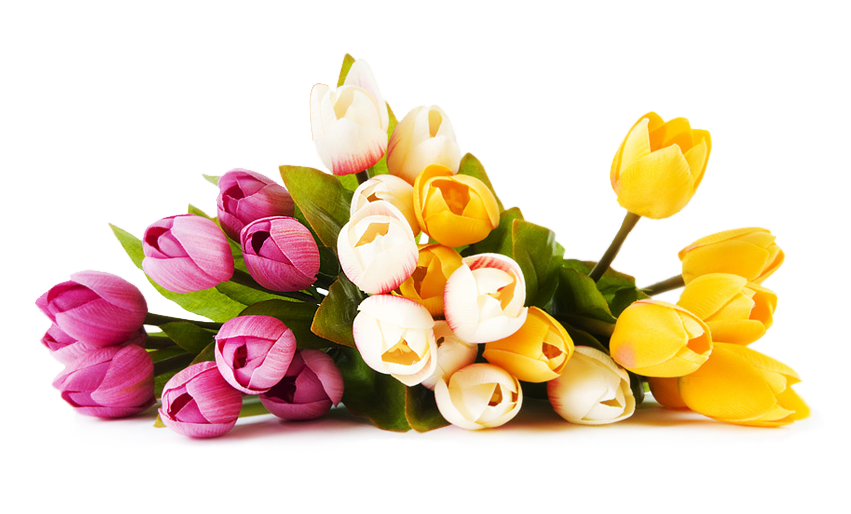 Real flowers png. Image