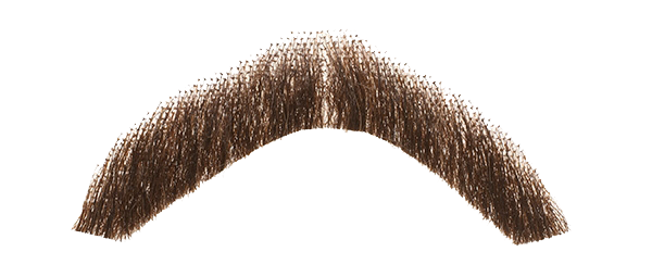 Real hair png. Moustache transparent images all