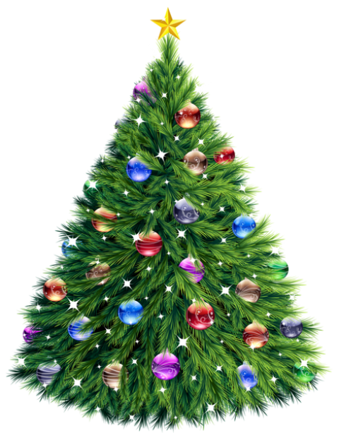 Real palm tree with christmas ornaments png free. Transparent images toppng