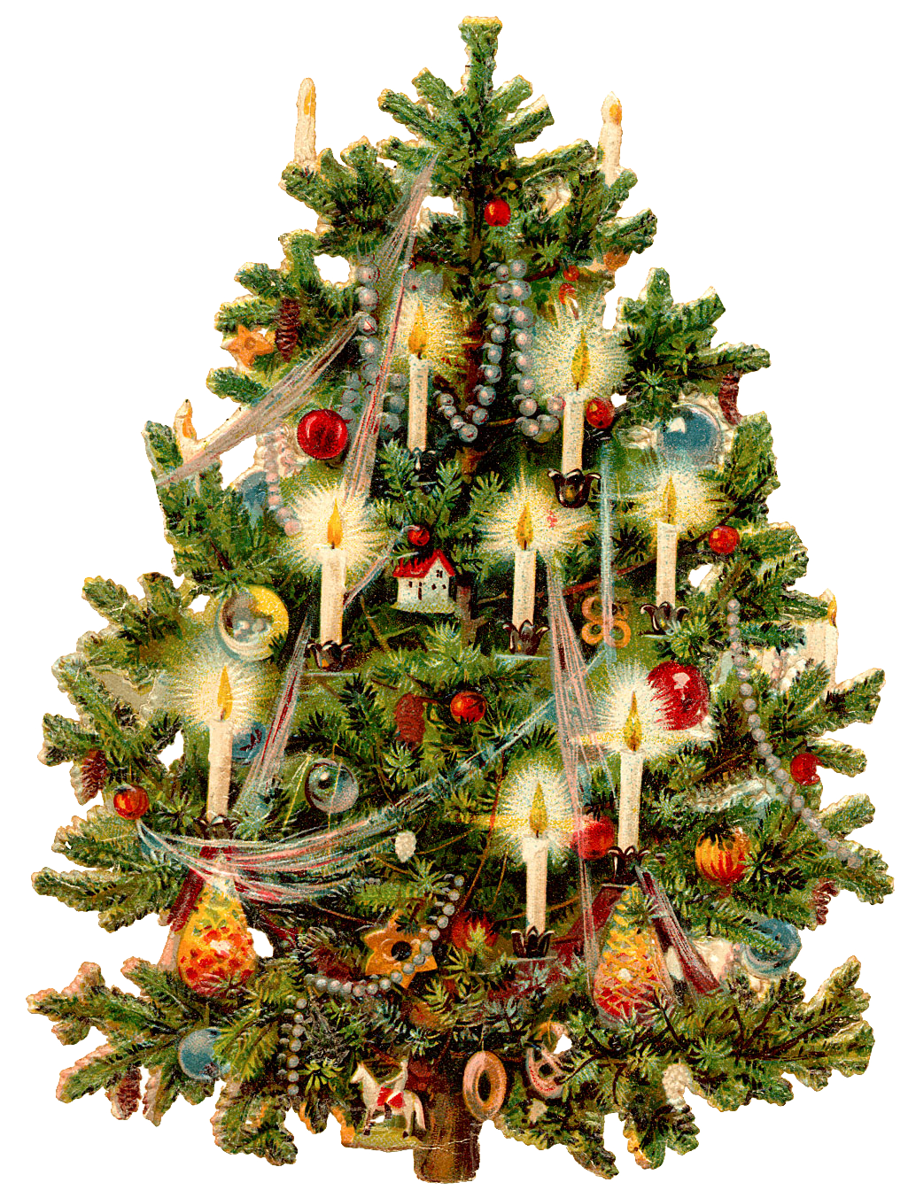 Real palm tree with christmas ornaments png free. Download transparentpng