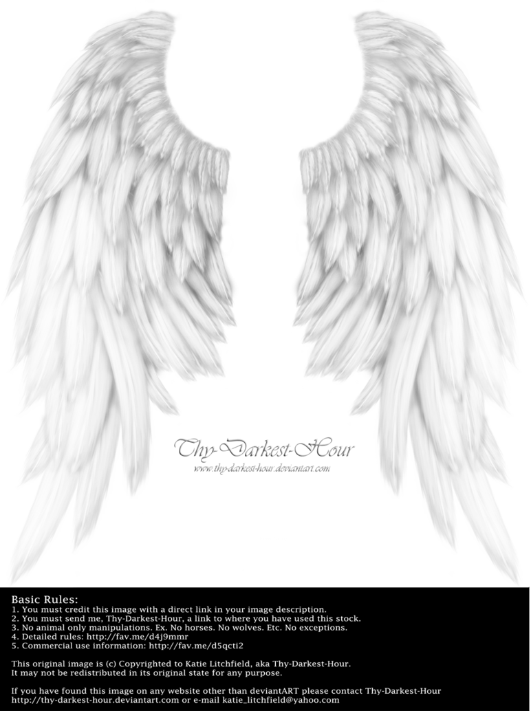 Realistic angel wings png. Download tattoos transparentpng