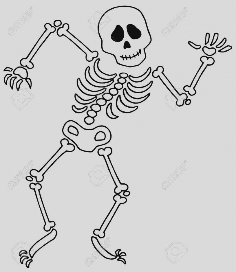 Bone clipart black and white. Bones of the foot