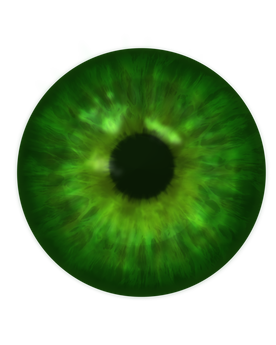 Realistic eye png. How to create eyes