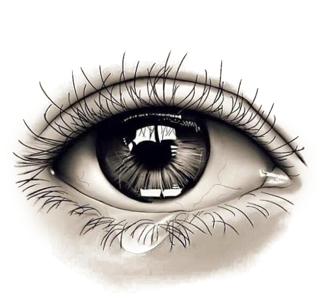 Realistic eye png. Download collection of eyes