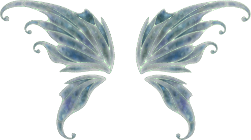 Realistic fairy wings png. Chat fairywings photo by