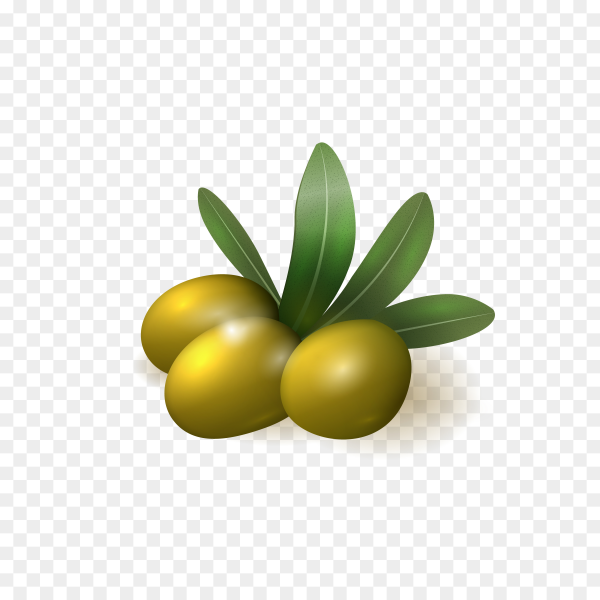 Realistic green olives with leaves isolated on transparent backg.