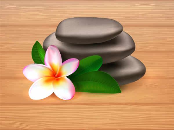 Realistic vector illustration of spa stones with plumeria flower.