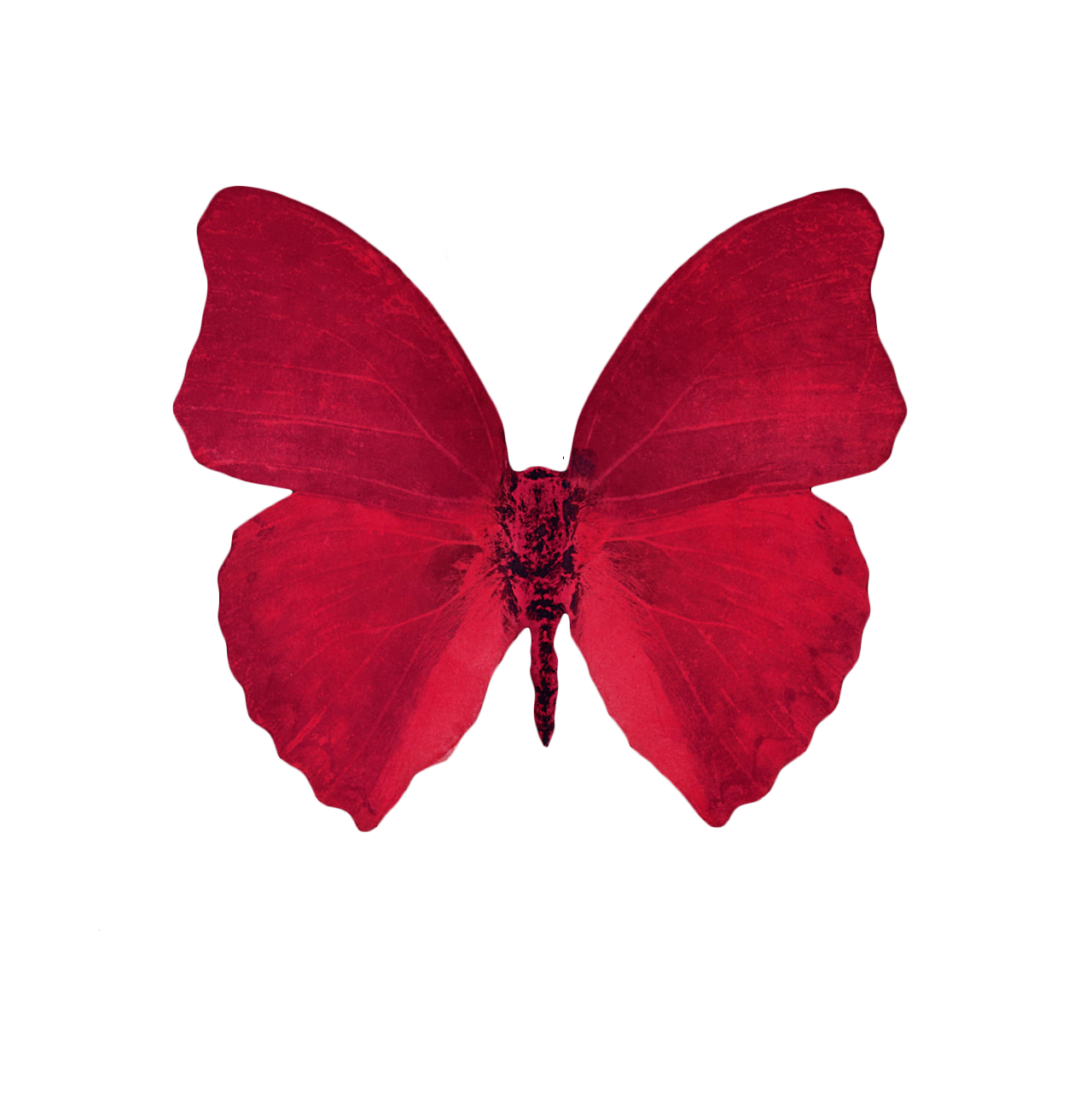 Red aesthetic png. Transparent source floserber sourcefloserber