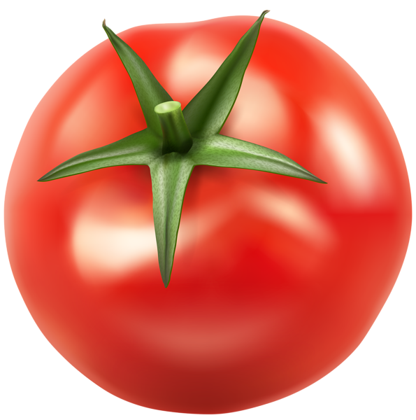 Red bell pepper png. Tomatos clip art image