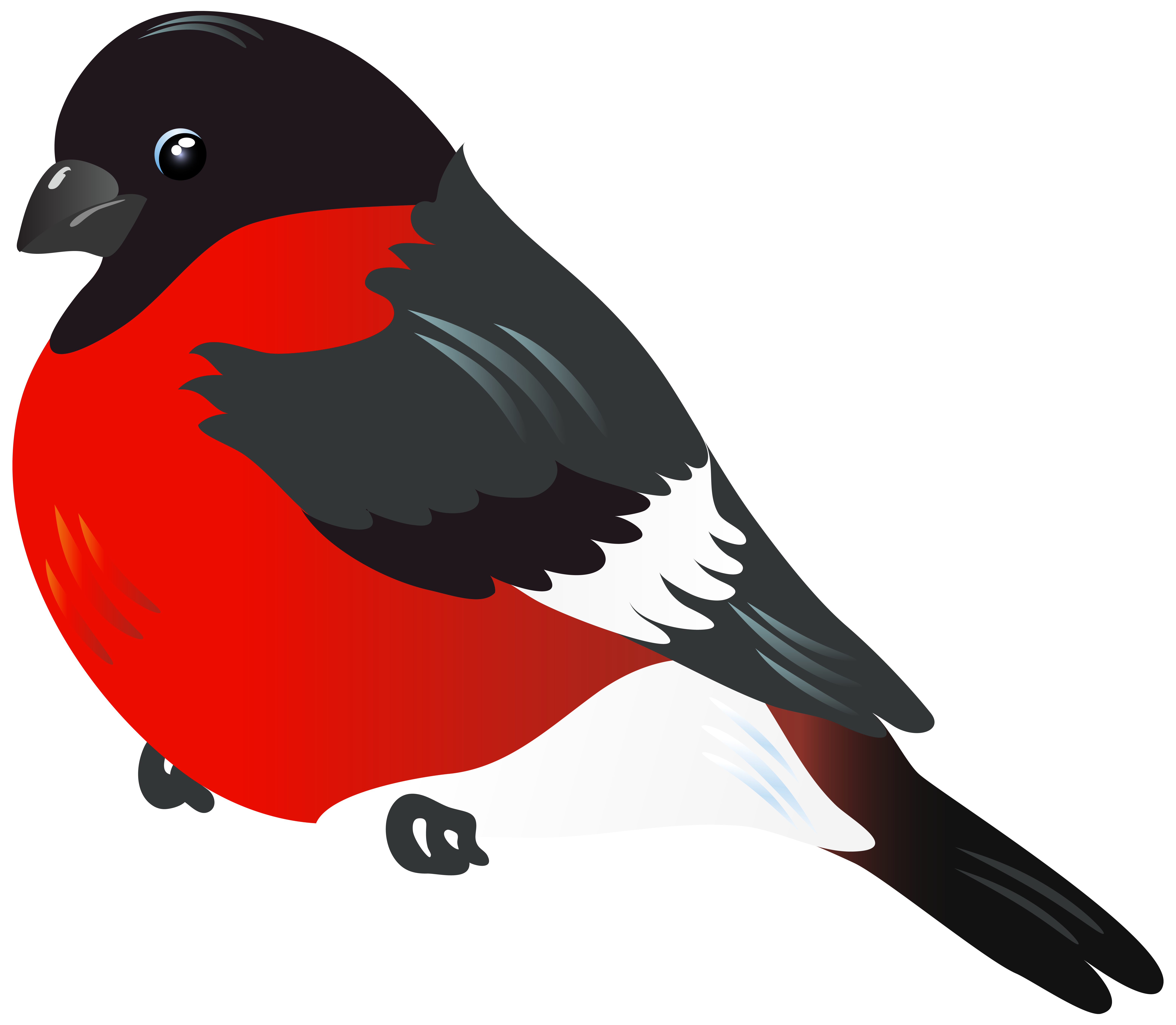 Red image gallery yopriceville. Bird clipart png banner download