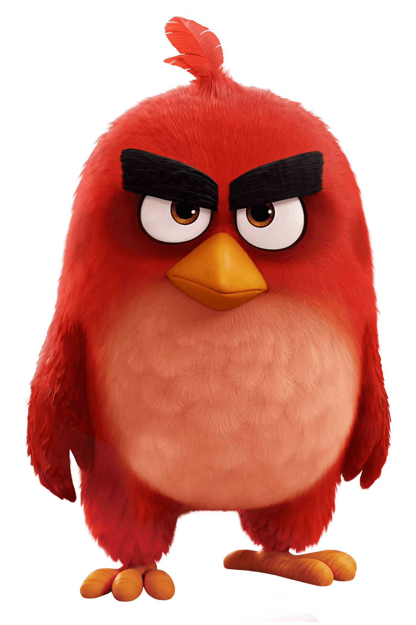 Red bird png. Angry birds movie transparent