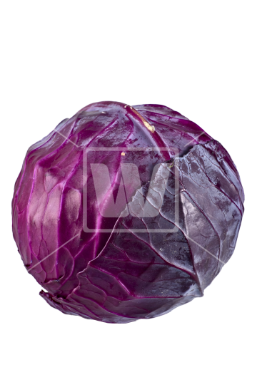 red cabbage png
