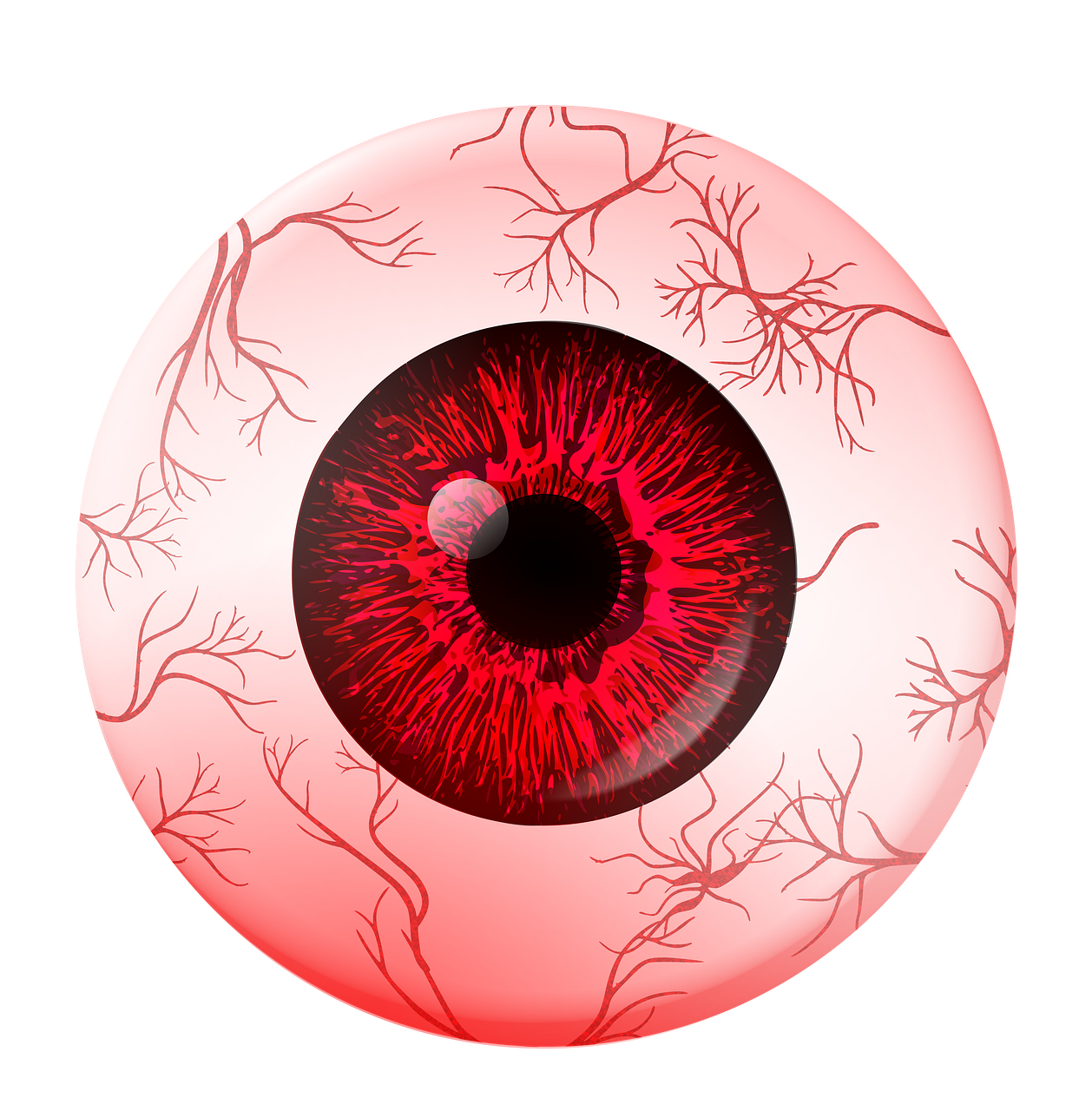 Red eye png. Extraocular muscles human movement