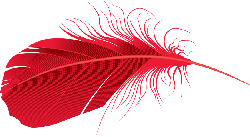 Red feather png. Free images toppng transparent