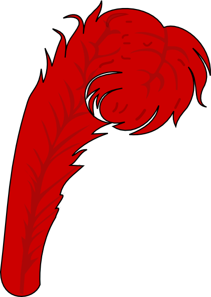 Red feather png. Clip art at clker