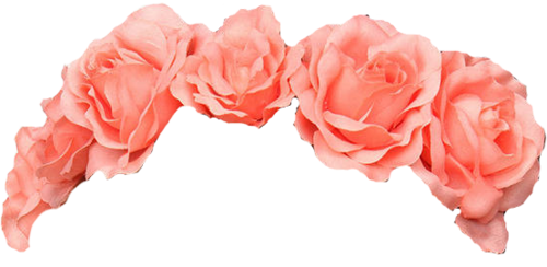 Red flower crown png. Overlay v rl s