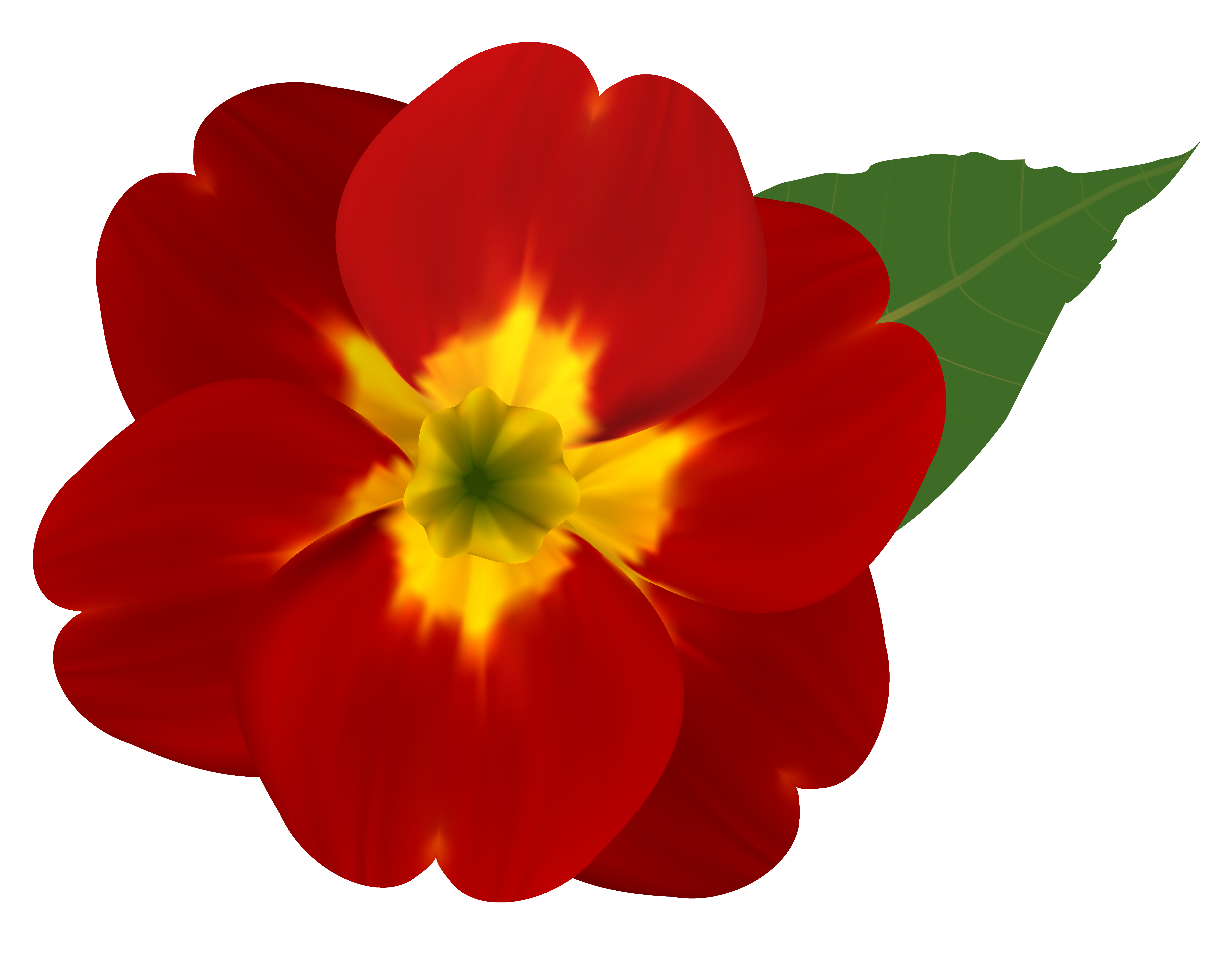 Red flower png. And yellow clipart image