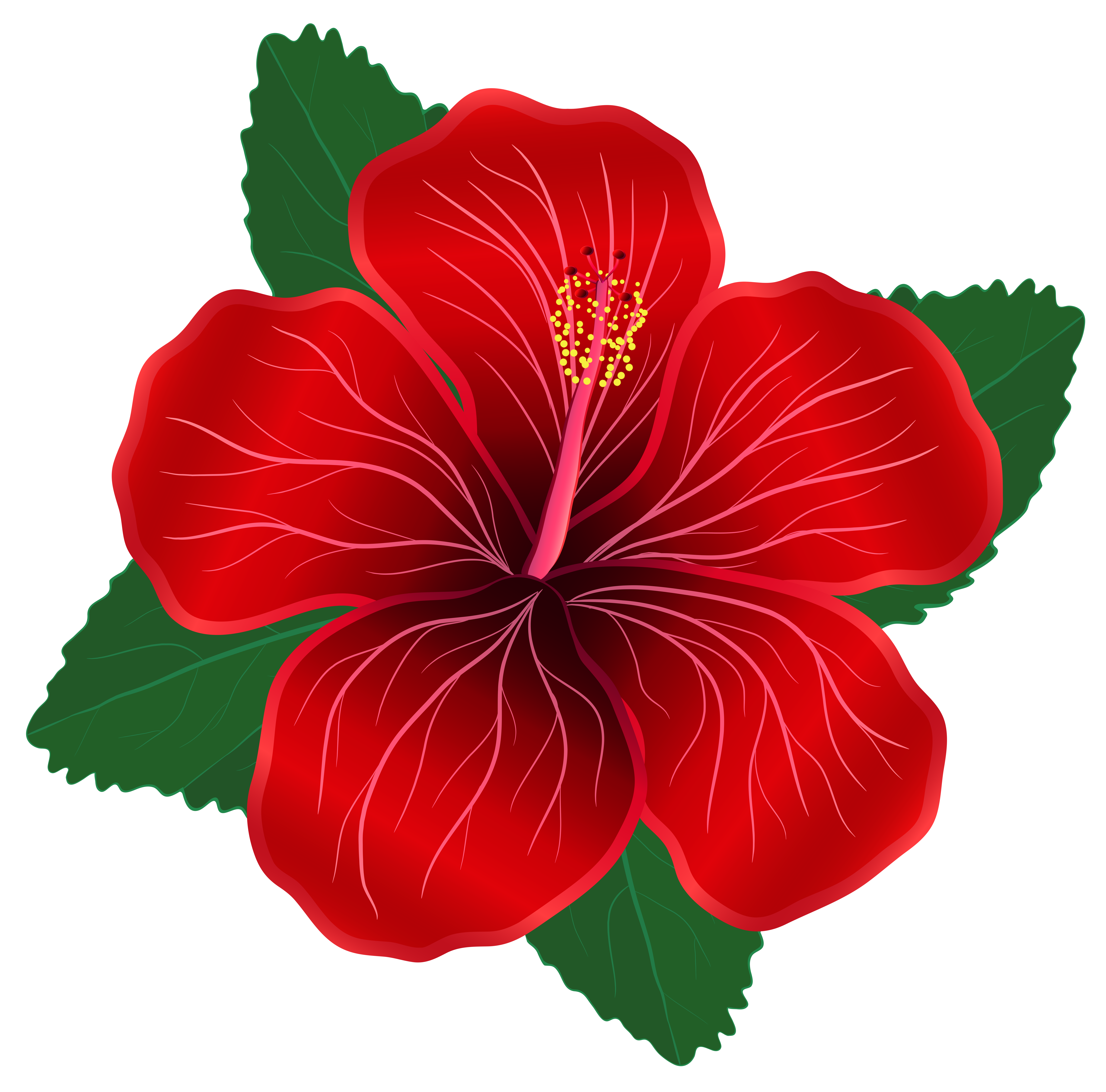 Red flowers png. Flower clipart image gallery