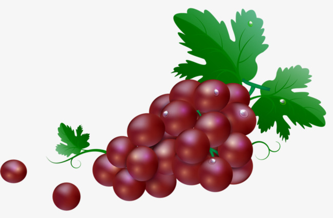 Red grape. Clipart station