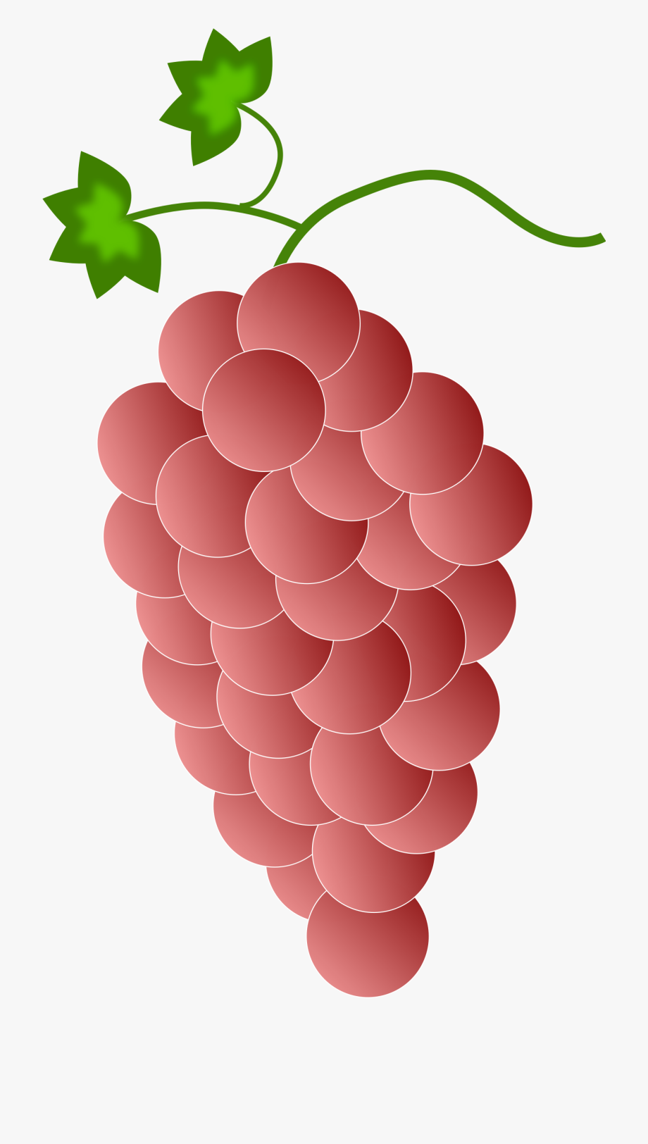 Red grape. Grapes clipart real free