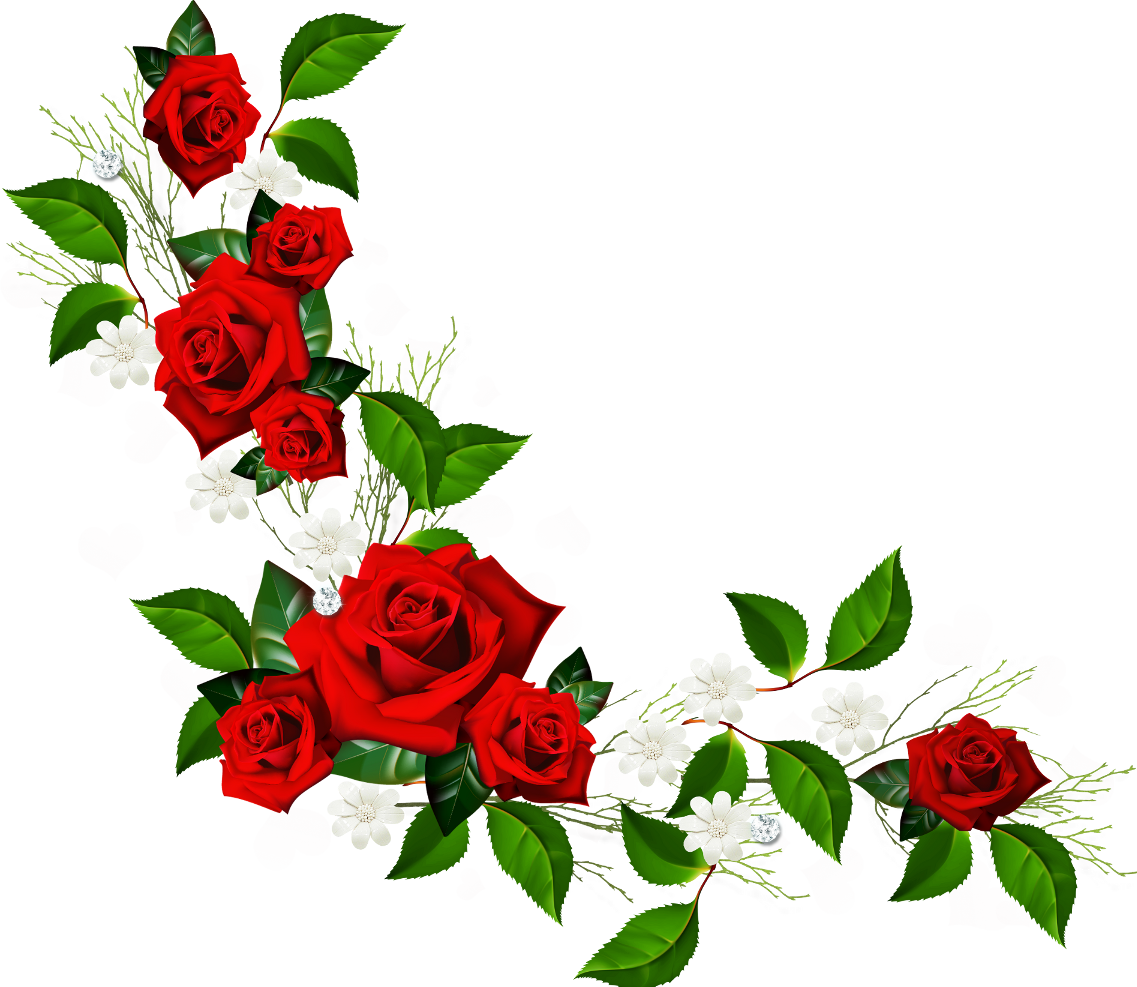 Red rose border png. Decorative element with roses