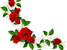 Red rose border png. Wood frame vector clipart