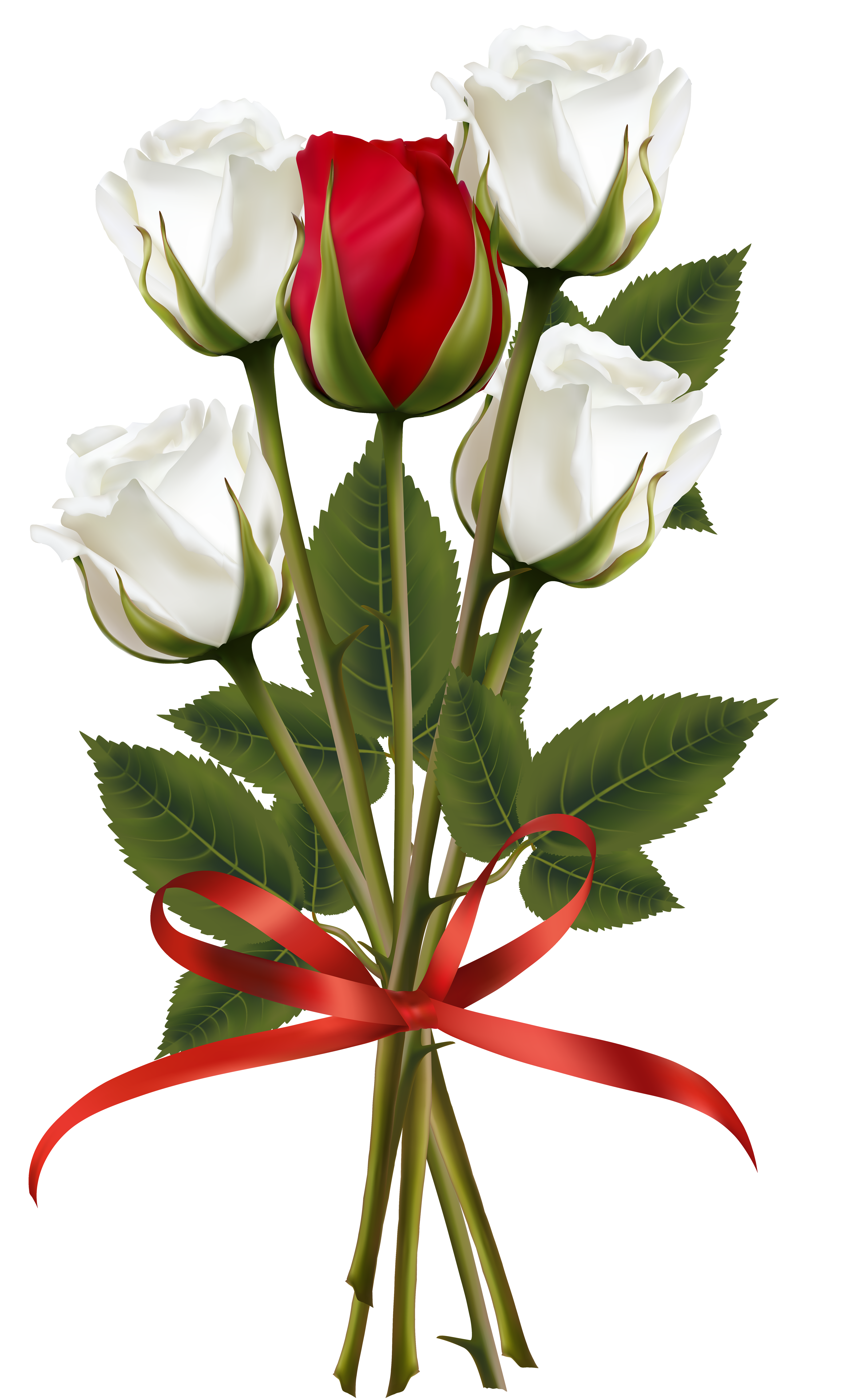 Red rose bouquet png. White and transparent clip