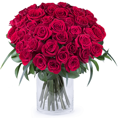 Rosas rojas vector png. Red roses bouquet