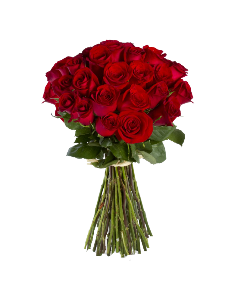 Red roses bouquet png. Free desktop wallpapers wide