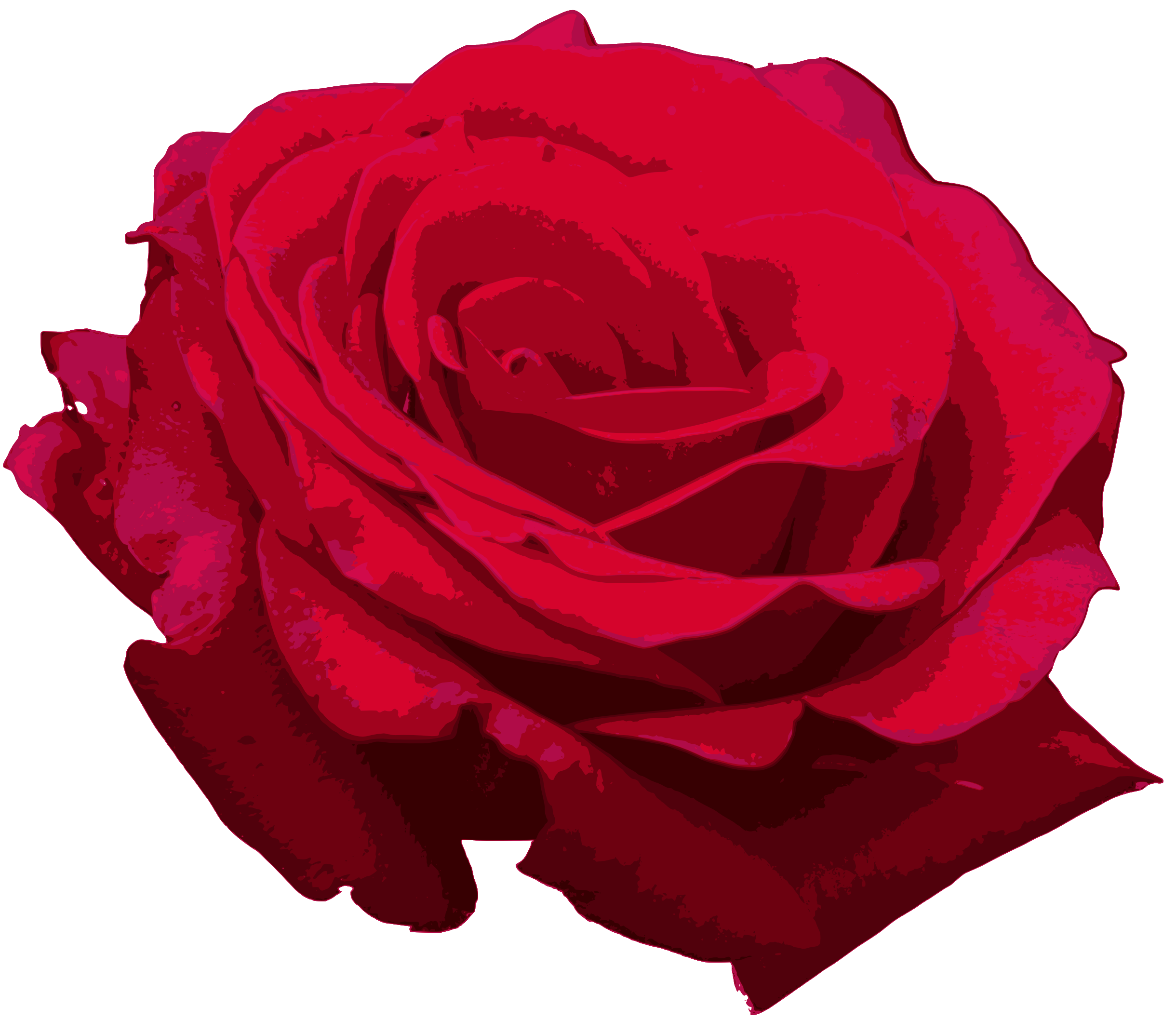 Red roses png. Rose image transparent onlygfx