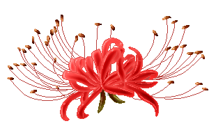 Lily transparent red. P spider pixel by