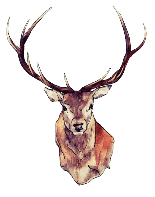 Image inline ms d. Reindeer antlers png tumblr picture freeuse download
