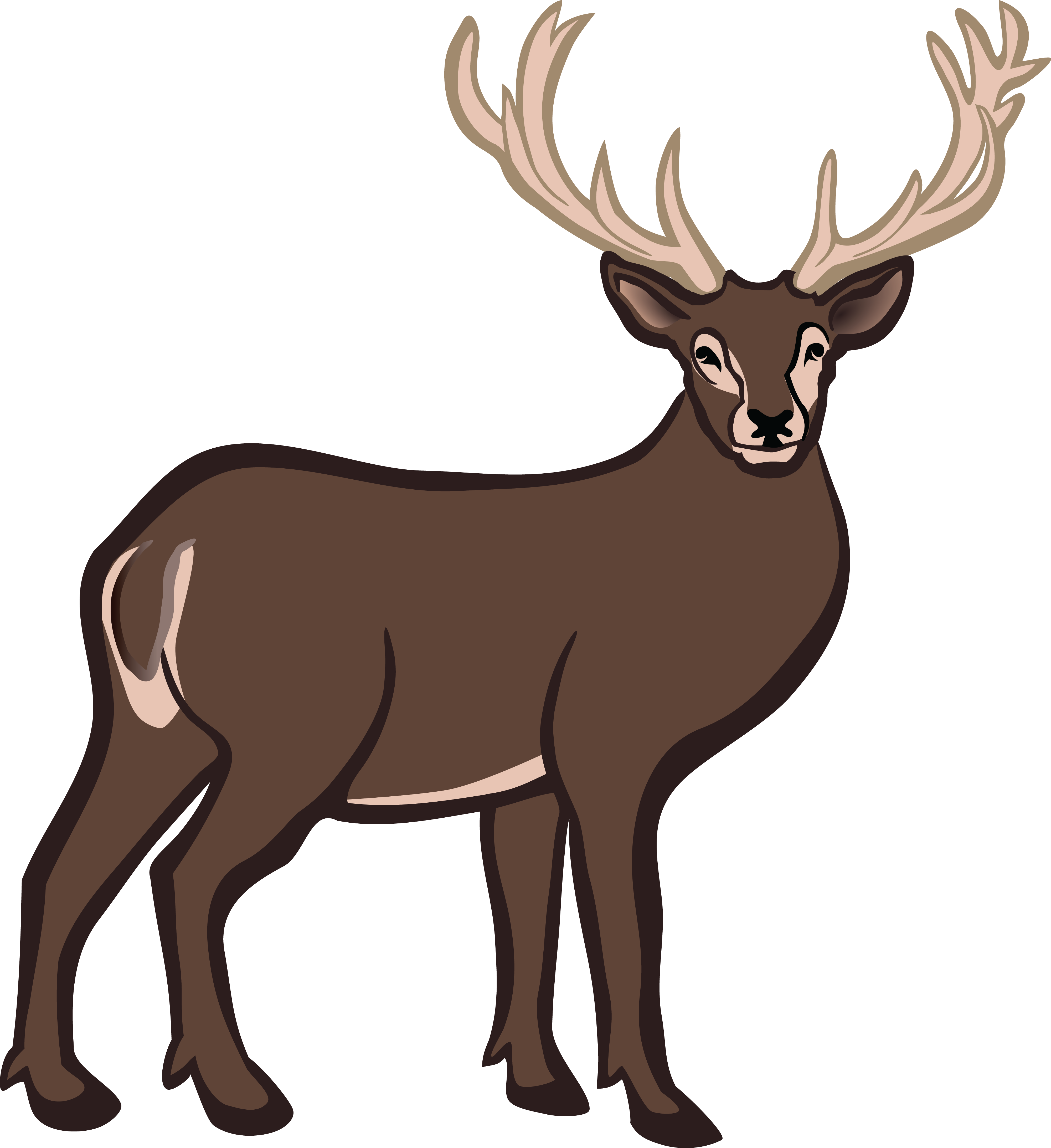 Brown clipart free collection. Reindeer antlers png image royalty free